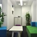 Un sediu care transmite energie: cum se lucreaza in jurul unui copac - Foto 17