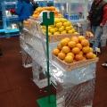 Profi Ice Store - Foto 13 din 13