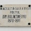 Vila Bolintineanu - Foto 13 din 14