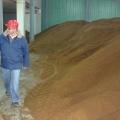 Cum arata investitia de 90 mil. euro a lui Ioan Niculae in bioetanol - Foto 7 din 12