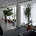Birou Deutsche Telekom - Foto 5 din 48