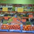 La cumparaturi in Barcelona - Foto 27 din 31