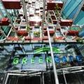 Green Gate - Foto 3 din 11