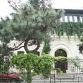 Casa Jitianu - Foto 1 din 15