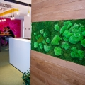 Un birou care inspira: cum lucreaza angajatii Yonder din Iasi - Foto 5