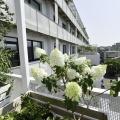 Birou de companie Lowe Romania - Foto 10 din 210