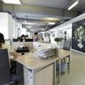 Birou de companie Lowe Romania - Foto 51 din 210