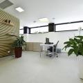 Birou de companie Lowe Romania - Foto 87 din 210