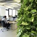Birou de companie Lowe Romania - Foto 90 din 210
