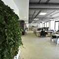 Birou de companie Lowe Romania - Foto 150 din 210