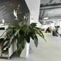 Birou de companie Lowe Romania - Foto 204 din 210