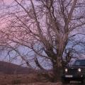 Jeep Wrangler - Foto 18 din 30