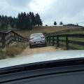 Mercedes-Benz GLE, GLE Coupe si GLC - Foto 12 din 23