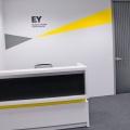 Birou de Companie - EY Timisoara - Foto 6 din 12