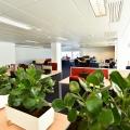 Birou de companie Avangate - Foto 51 din 58