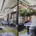 Birou de companie - Kalon - Foto 12 din 13