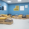 Birou de Companie - extindere Betfair - Foto 3 din 20