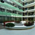 Birou de companie Oracle - Foto 16 din 49