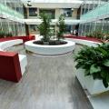 Birou de companie Oracle - Foto 17 din 49