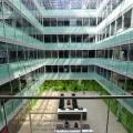 Birou de companie Oracle - Foto 18 din 49