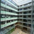 Birou de companie Oracle - Foto 43 din 49