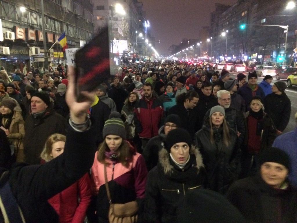 Peste 20.000 de oameni au protestat: ce diferente sunt fata de iesirile din anii precedenti [FOTO] - Foto 1 din 15