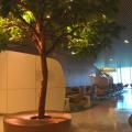 Aeroportul Charles de Gaulle - Foto 2 din 14