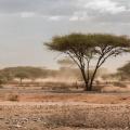 Pe bicicleta in Africa - Foto 28 din 44