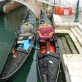 Italia, in straie de sarbatoare: Vezi cum arata Carnavalul de la Venetia in 2010 - Foto 18 din 36