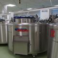 FOTO  Cum arata si cum sunt stocate probele in cea mai mare banca de celule stem din Europa - Foto 7