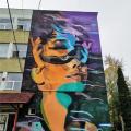 GALERIE FOTO Bacaul, orasul cu cele mai multe picturi murale care purifica aerul din Europa - Foto 1