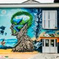 GALERIE FOTO Bacaul, orasul cu cele mai multe picturi murale care purifica aerul din Europa - Foto 2