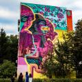 GALERIE FOTO Bacaul, orasul cu cele mai multe picturi murale care purifica aerul din Europa - Foto 5