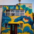 GALERIE FOTO Bacaul, orasul cu cele mai multe picturi murale care purifica aerul din Europa - Foto 6