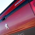 Peugeot Hoggar - Foto 3 din 3
