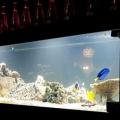 Restaurant Aqua - Foto 4 din 5