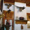 Restaurant Burebista - Foto 2 din 9
