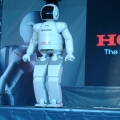 Robotul Asimo in Romania - Foto 9 din 13