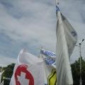 Miting, Piata Victoriei - Foto 11 din 49