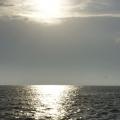 Delta Dunarii, vazuta prin obiectivele noilor camere foto NEX-5 si NEX-3 de la Sony - Foto 1