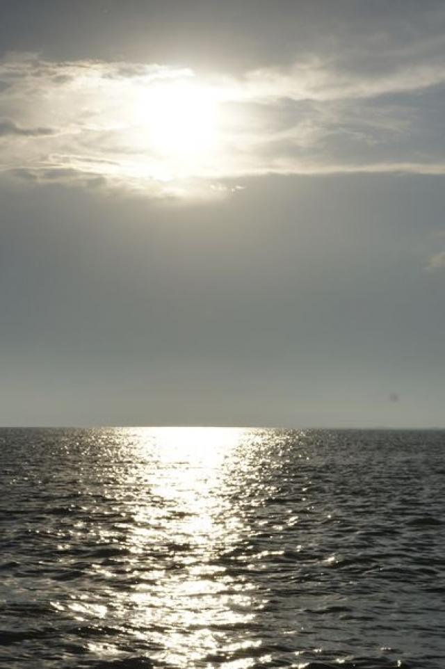 Delta Dunarii, vazuta prin obiectivele noilor camere foto NEX-5 si NEX-3 de la Sony - Foto 1 din 26