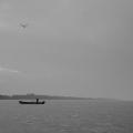 Delta Dunarii, vazuta prin obiectivele noilor camere foto NEX-5 si NEX-3 de la Sony - Foto 5