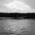 Delta Dunarii, vazuta prin obiectivele noilor camere foto NEX-5 si NEX-3 de la Sony - Foto 9