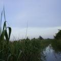 Delta Dunarii, vazuta prin obiectivele noilor camere foto NEX-5 si NEX-3 de la Sony - Foto 11