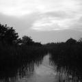 Delta Dunarii, vazuta prin obiectivele noilor camere foto NEX-5 si NEX-3 de la Sony - Foto 13