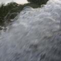 Delta Dunarii, vazuta prin obiectivele noilor camere foto NEX-5 si NEX-3 de la Sony - Foto 17