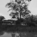 Delta Dunarii, vazuta prin obiectivele noilor camere foto NEX-5 si NEX-3 de la Sony - Foto 18