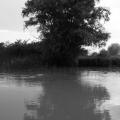 Delta Dunarii, vazuta prin obiectivele noilor camere foto NEX-5 si NEX-3 de la Sony - Foto 19