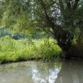 Delta Dunarii, vazuta prin obiectivele noilor camere foto NEX-5 si NEX-3 de la Sony - Foto 25