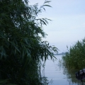 Delta Dunarii, vazuta prin obiectivele noilor camere foto NEX-5 si NEX-3 de la Sony - Foto 26